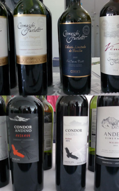 Chilean and Argentinian Wines